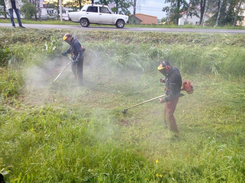 Франківка просить Марцінківа, щоб дав вказівку покосити траву  у місті