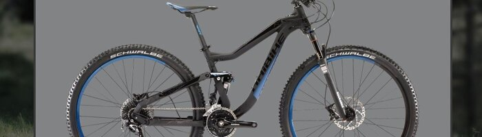 full suspention 29ER