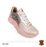 be53f7653 Кроссовки женские купить в Полтаве по низким ценам. Продажа на ...