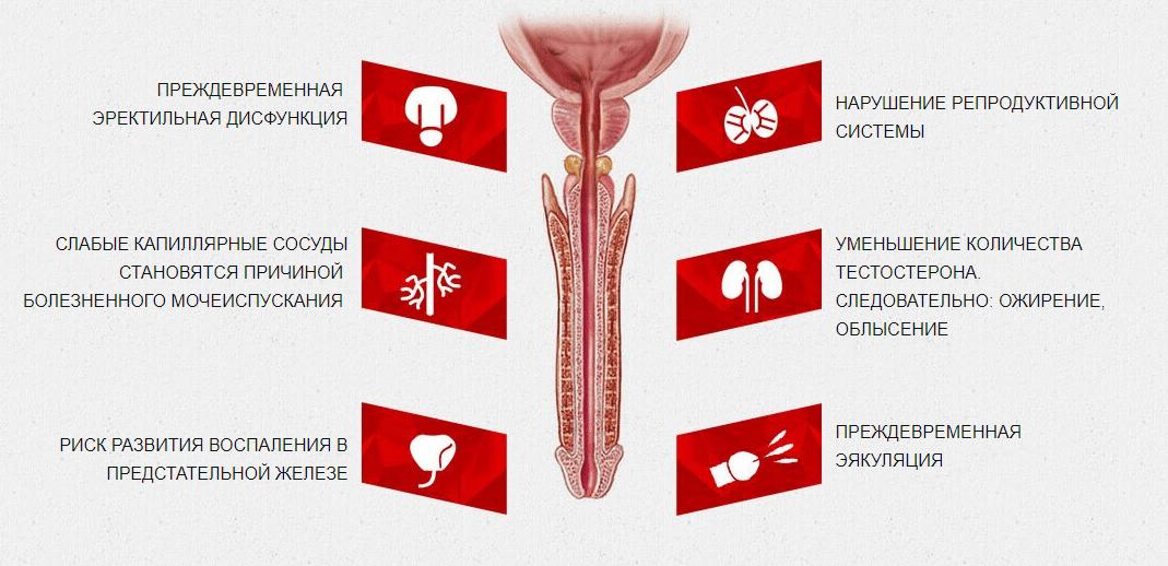 Укрепить сосуды пениса