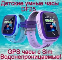 Детские GPS часы Smart Baby Watch DF25 (Q300s)